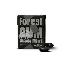 Guma do żucia mięta 20g Forest Gum