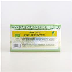 Herbatka detoks na odtruwanie 20x2g Dary Natury